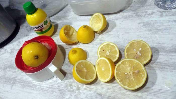mousse-limon-zumo